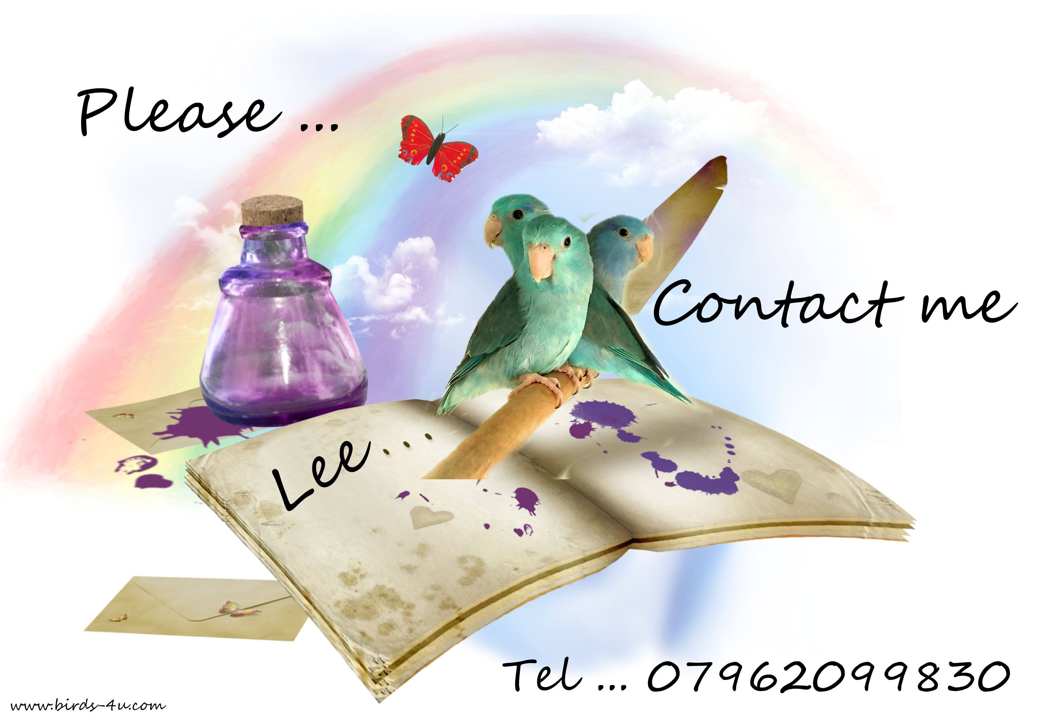 Contact us Lee